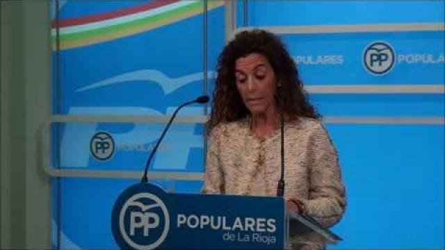 cotelo_presenta_una_iniciativa_del_grupo_popular_contra_la_violencia_de_genero
