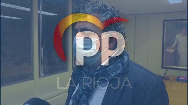 comparecencia_de_sara_alba_en_la_comision_institucional_del_parlamento_de_la_rioja